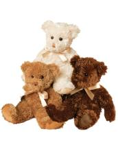 Teddy Bears & More!