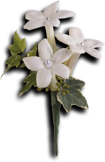White Gloves Boutonniere