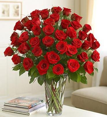 4 Dozen Premium Long Stem Roses