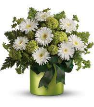 Teleflora\'s Luck of the Irish
